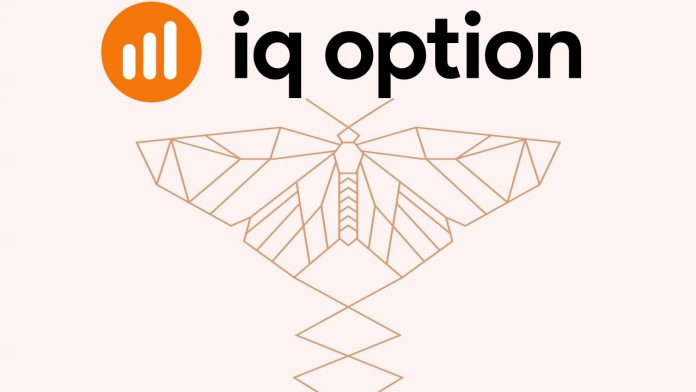 How to use the Butterfly Harmonic pattern to trade Forex in IQ Option